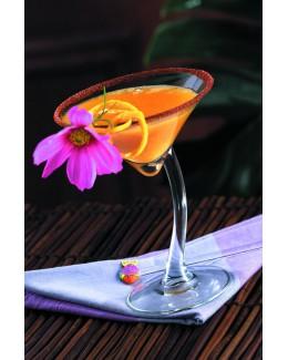 Bravura martini kieliszek 200 ml